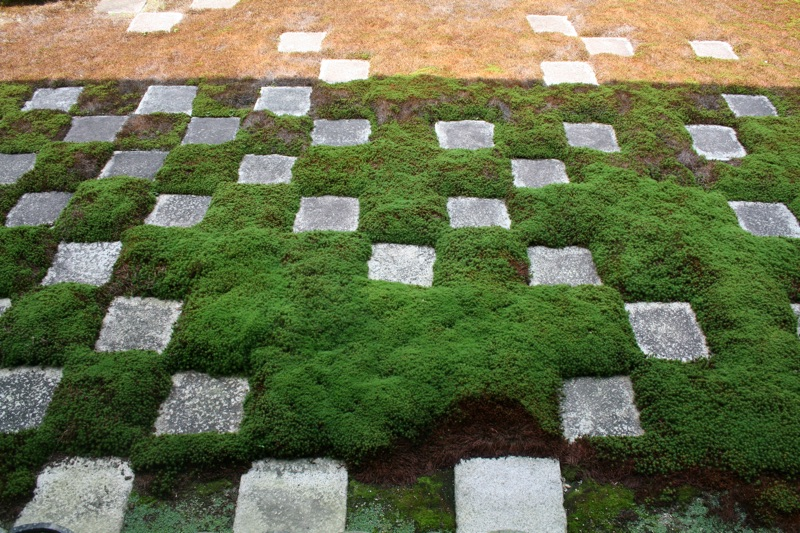 fazenda japan interior 4